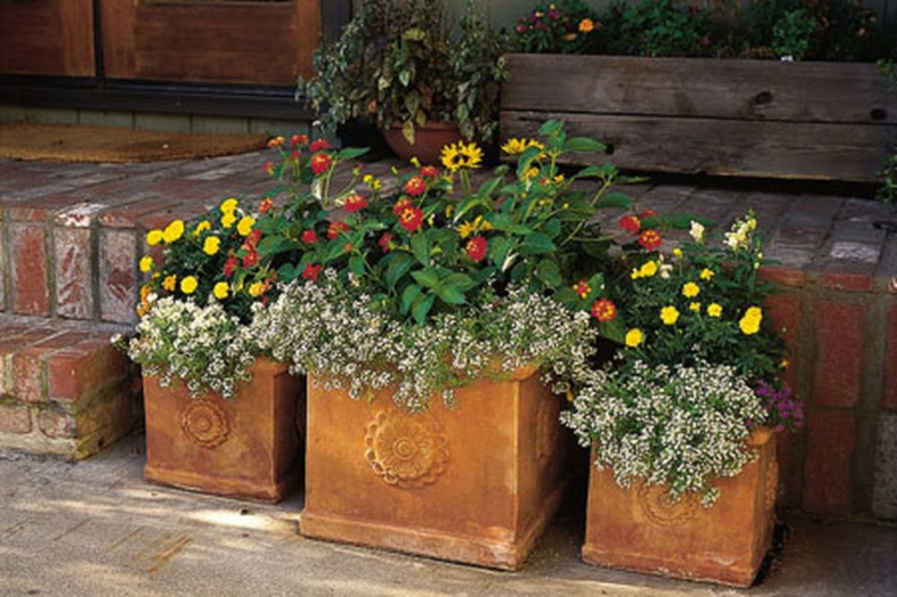 container_gardens_x.0